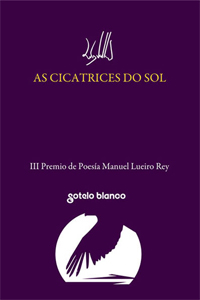 7. As cicatrices do sol